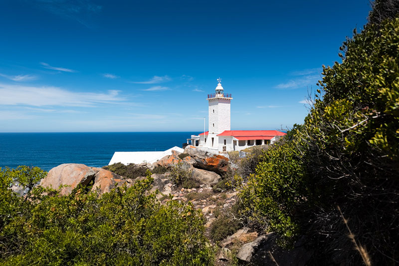 Mossel bay point-7599
